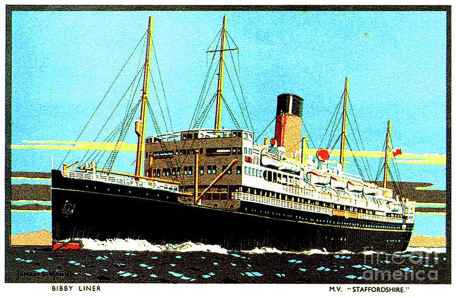 Bibby Liner Mv Staffordshire Travel Postcard Painting