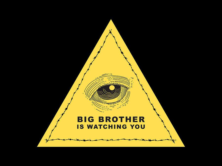 1984 Drawing - Big Brother is watching you by Stanislav Yatsenko