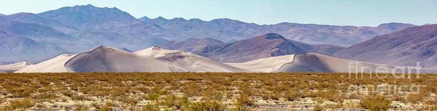 Big Dune Nevada Panorama Photograph