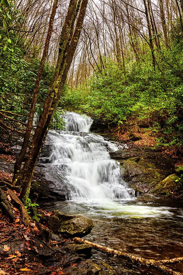 Big Laurel Falls in Autumn II by Debra and Dave Vanderlaan