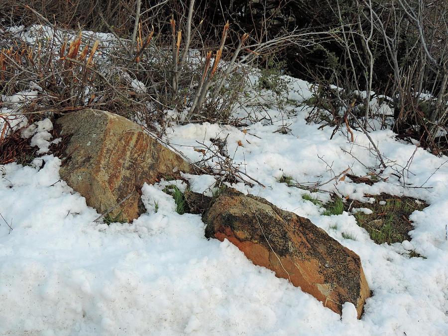 Big Sandy Snow Photograph