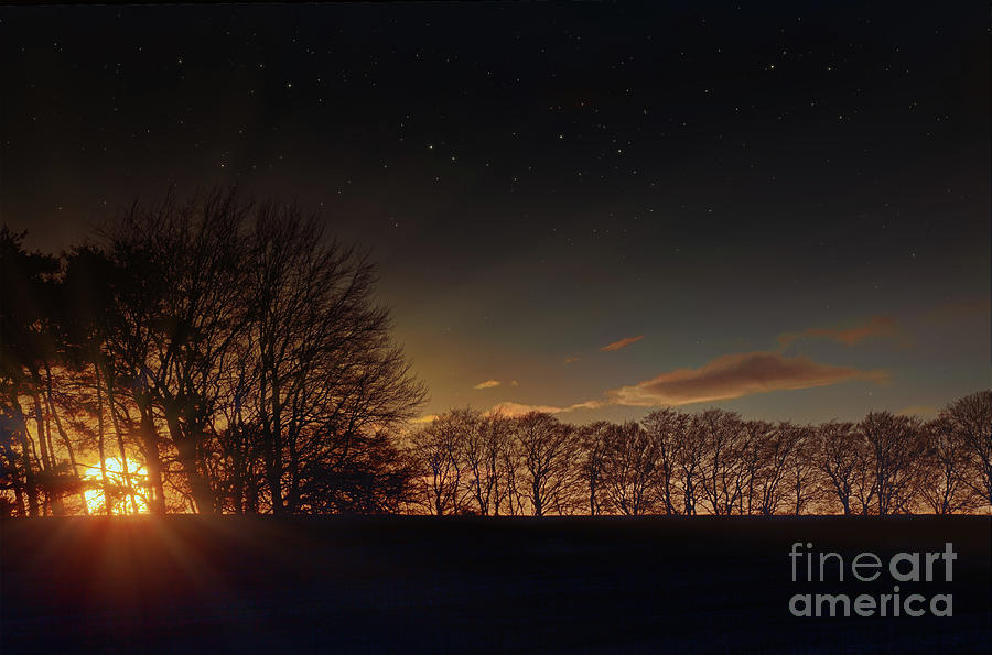 Big sunset glow through winter trees by Simon Bratt Photography LRPS