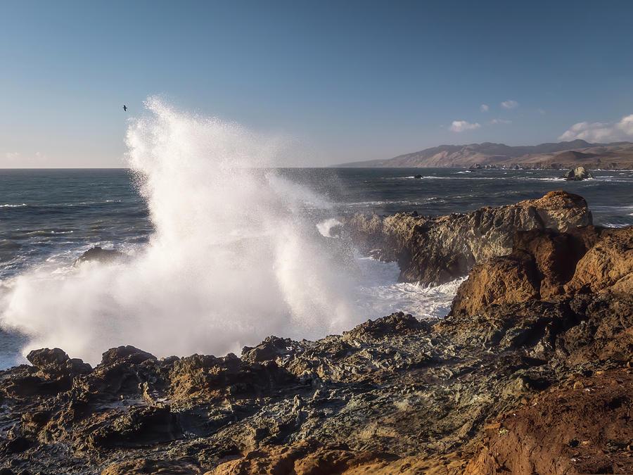 Big Waves in Sunny California by Michele Cornelius