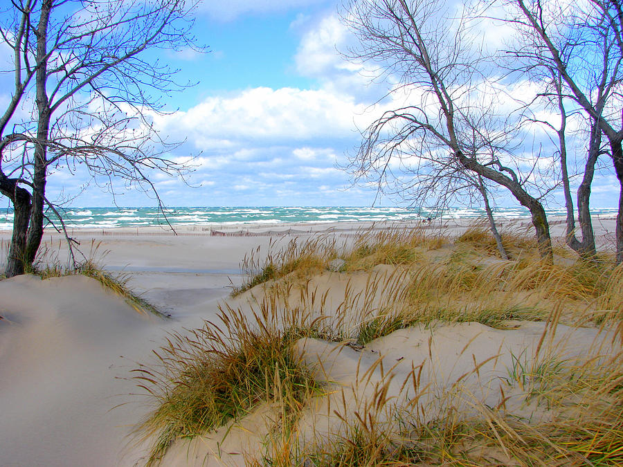Trees Photograph - Big Waves on Lake Michigan by Michelle Calkins