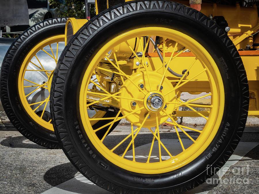 Big Yellow by Robin Zygelman