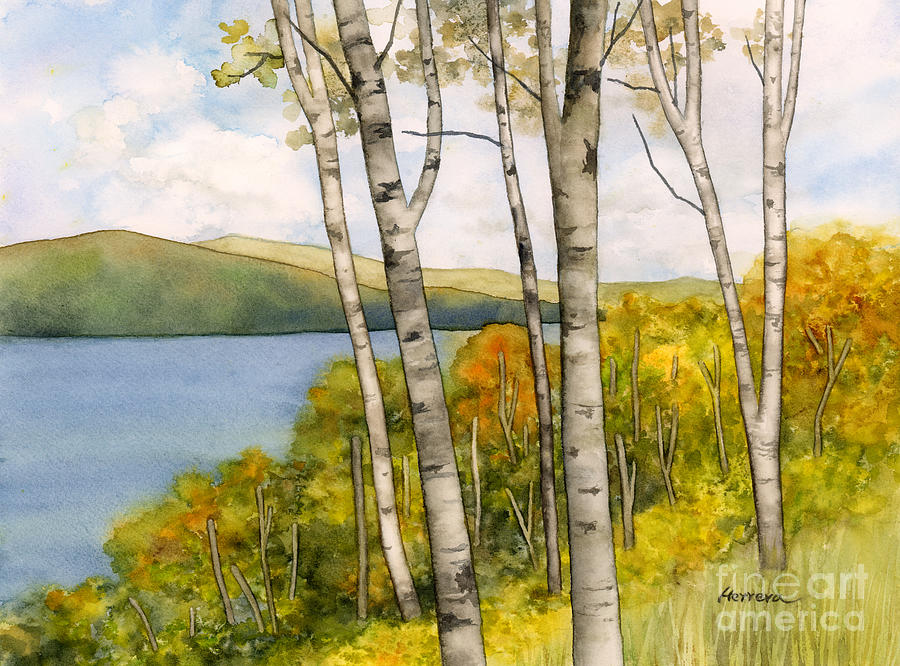 Birch Trees And Autumn Foliage Painting