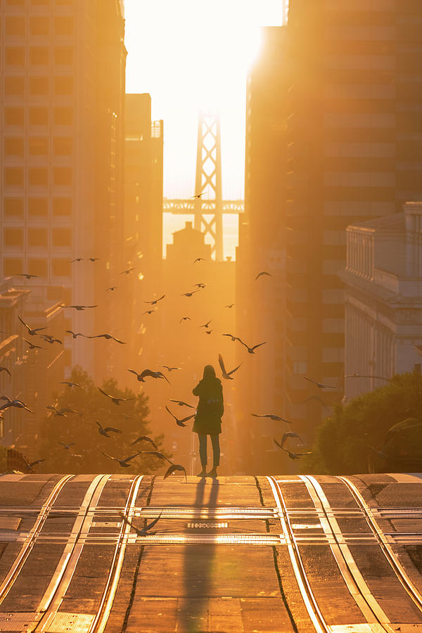 Bird Girl Takes San Francisco Photograph by Vincent James