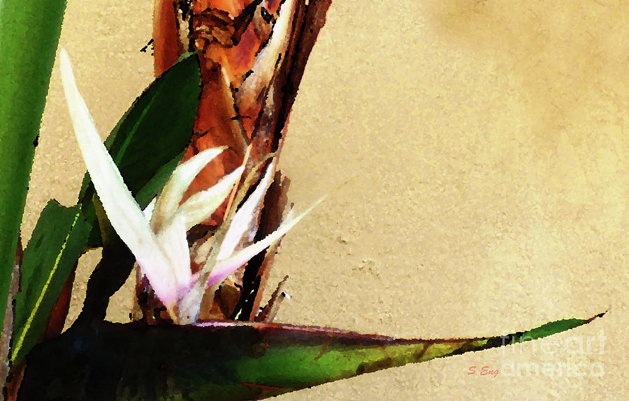 Bird of Paradise Abstract 300 by Sharon Williams Eng