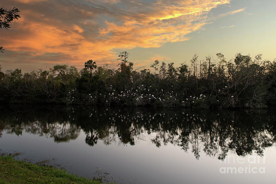 Birds Of A Feather - Sunset Meeting Photograph