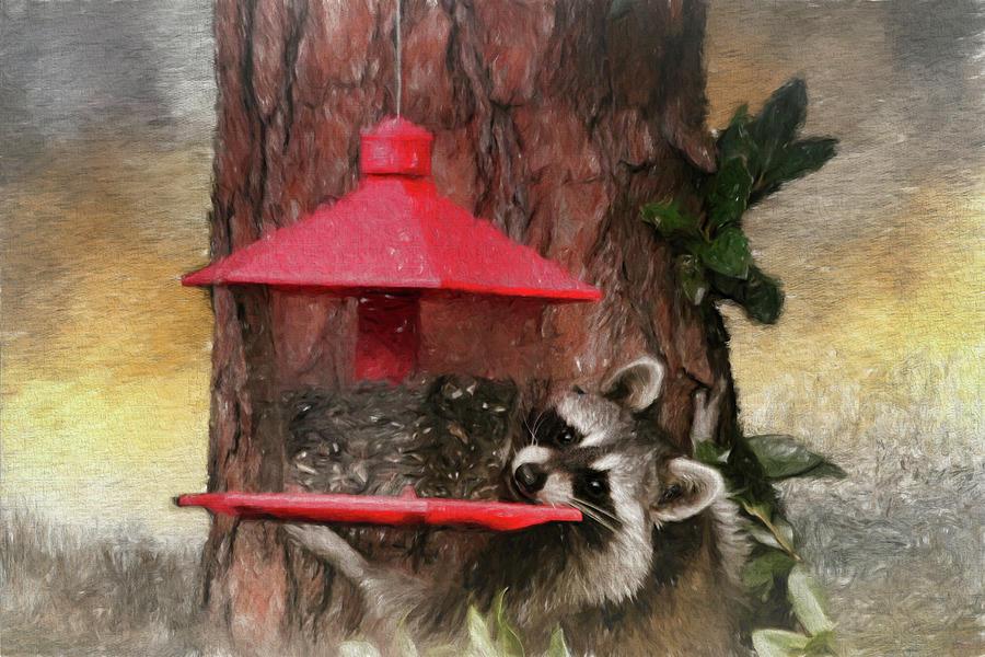 Birdseed Stealing Bandit Photograph