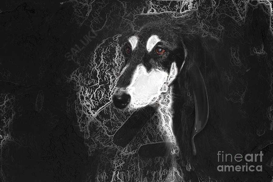 Black And Silver Saluki Digital Art