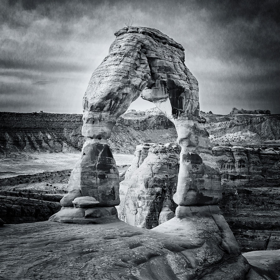 Black and White Delicate Arch by Joan Carroll