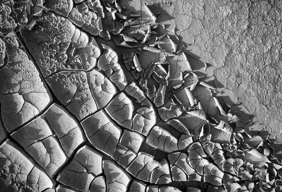 Black And White Mud Cracks Photograph