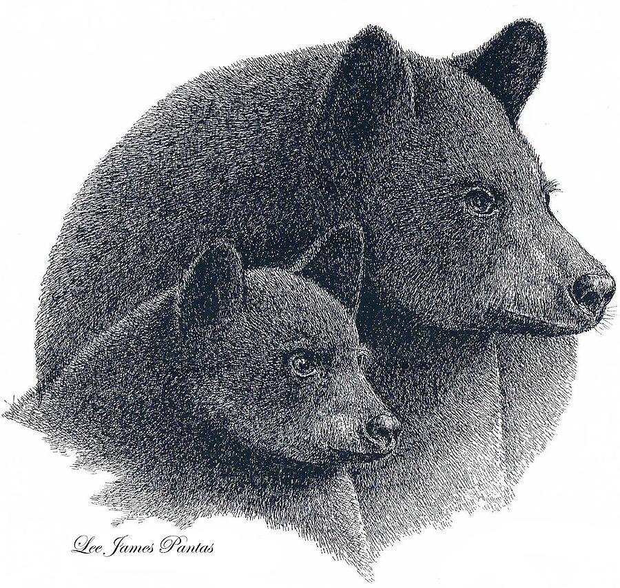 Black Bears Drawing - Black Bears by Lee Pantas