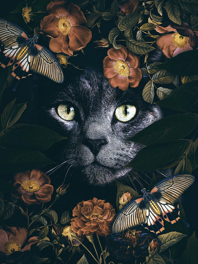 Black Cat With Butterflies And Rosses Digital Art