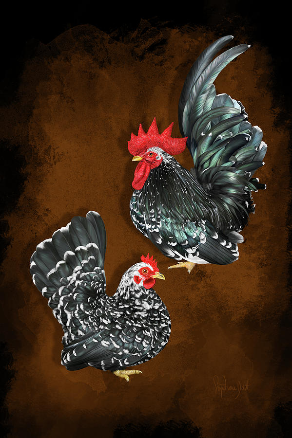 Chickens Digital Art - Black Mottled Or Butschi Japanese Bantams/chabo by Sigrid Van Dort