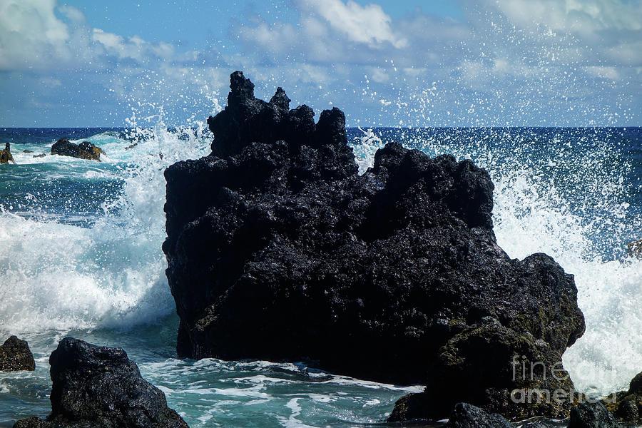 Black Rock Sea Monster by Wilko Van de Kamp
