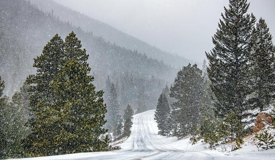 Blizzard in the Rockies by Marcy Wielfaert