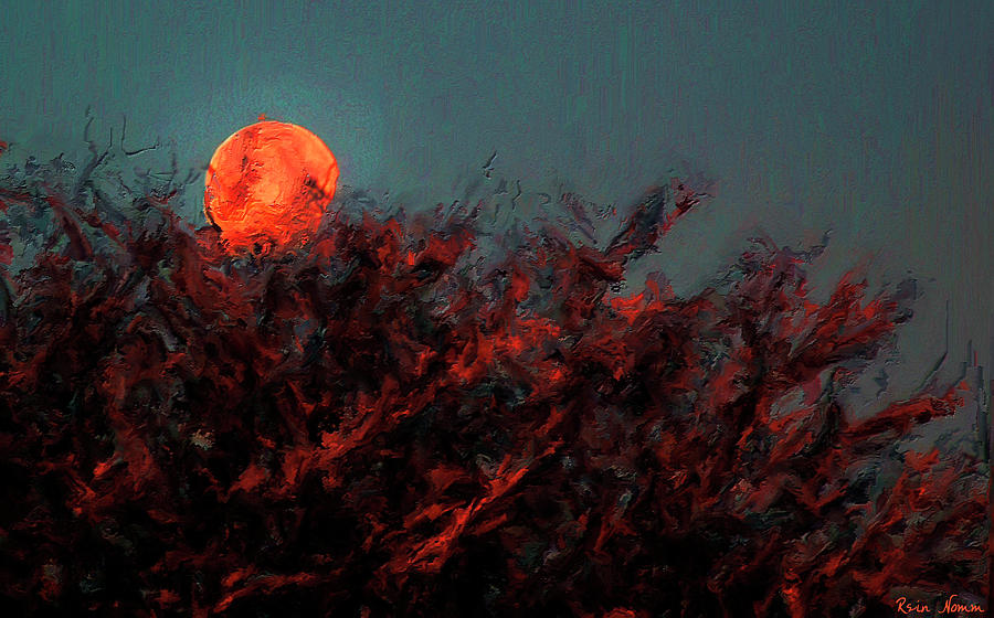 Blood Moon by Rein Nomm