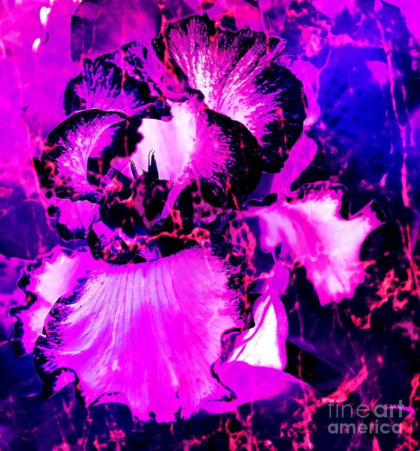 Blooming Fire Digital Art