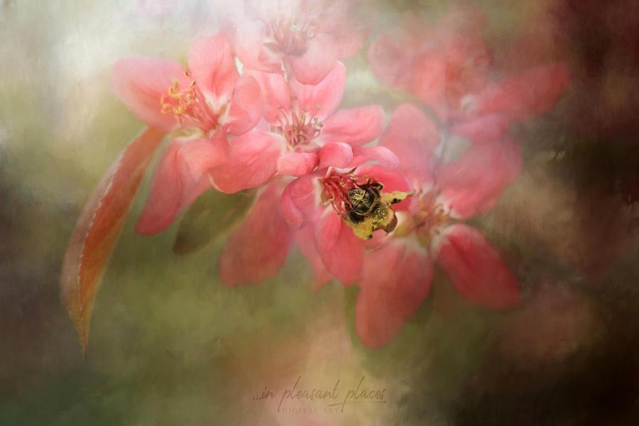 Blossoming by Joanna Kovalcsik