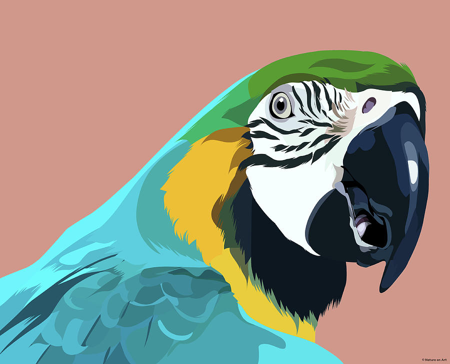 Blue And Gold Macaw Mixed Media