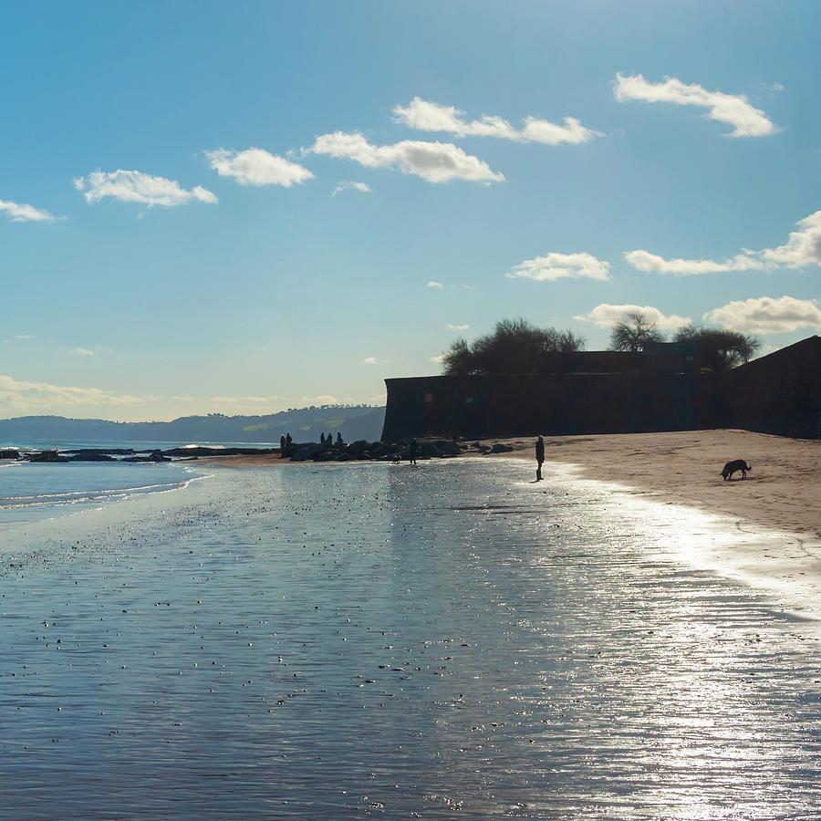 Seascape Photograph - Blue Beach by A J Paul