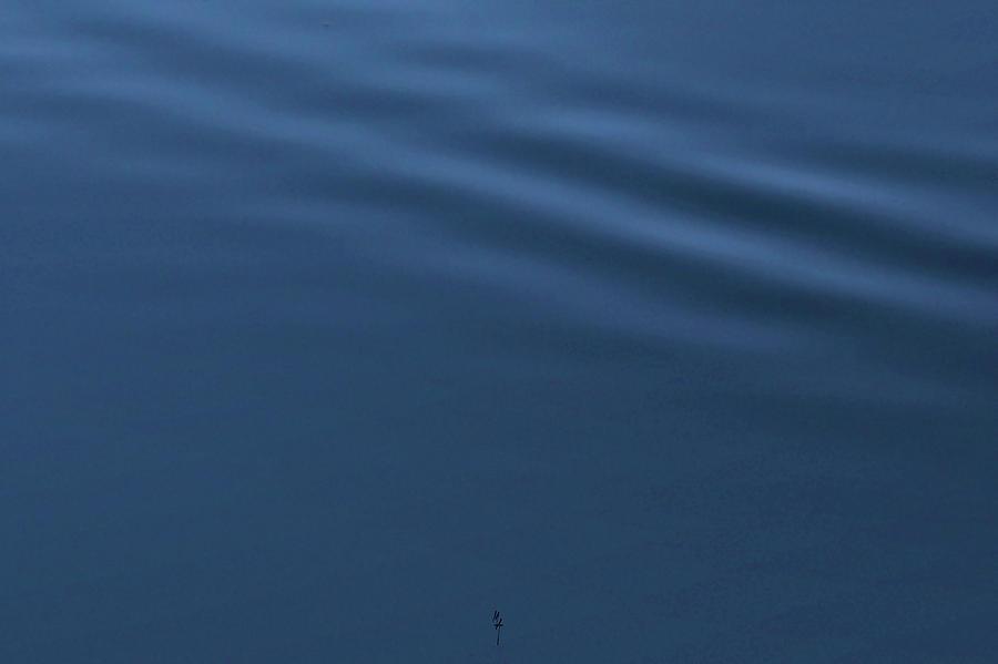 Blue Drapery by Attila Meszlenyi