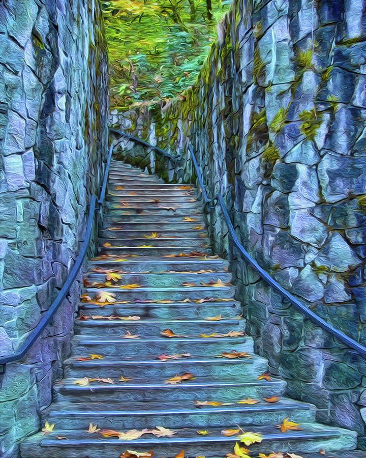 Blue Forest Stairway by Frank Lee Hawkins