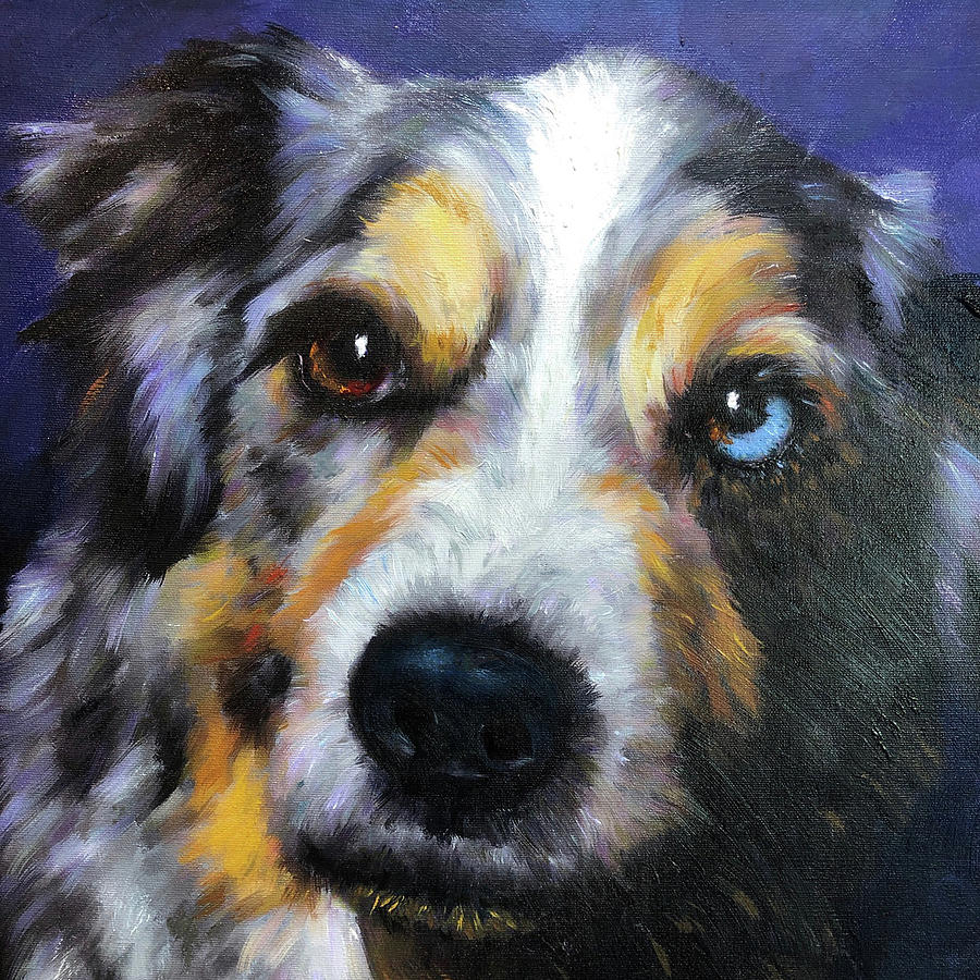 Blue Merle Dog Portrait Painting