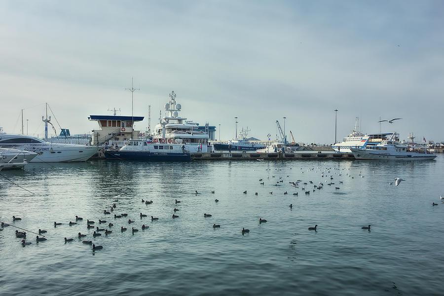 Seaport Photograph - Blue Morning #2 by Margarita Buslaeva
