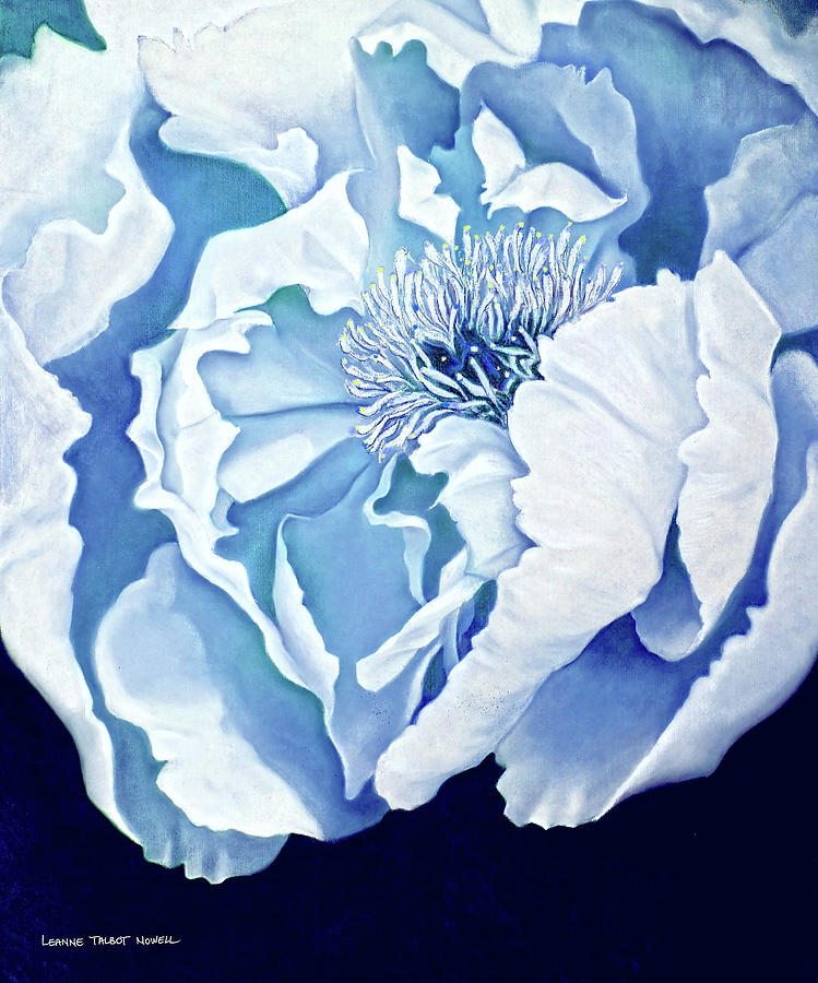 Blue Drawing - Blue Peony by Leanne Nowell