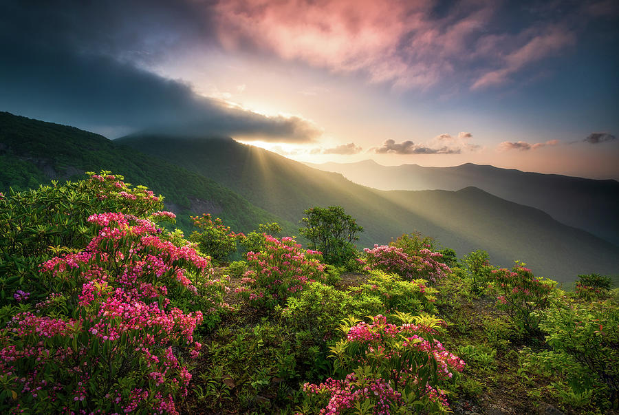Blue Ridge Parkway Photography Craggy Gardens Asheville Nc Scenic Landscape Photograph