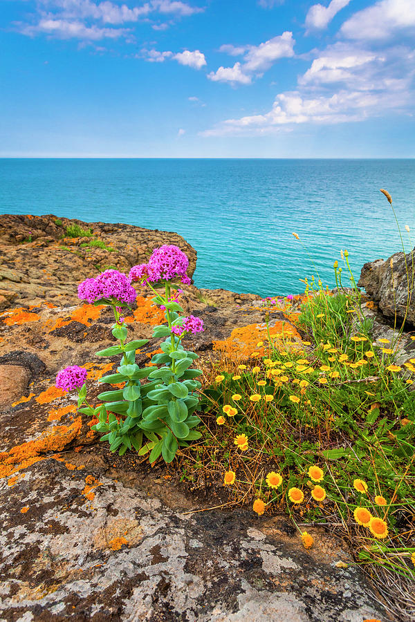 Black Sea Photograph - Blue Sea by Evgeni Dinev
