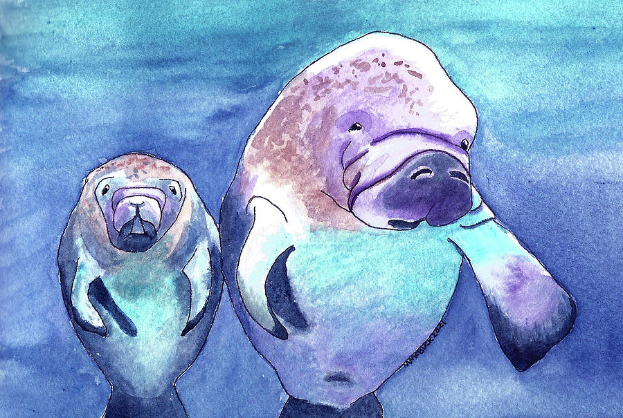 Blue Spring State Park Manatees Mixed Media