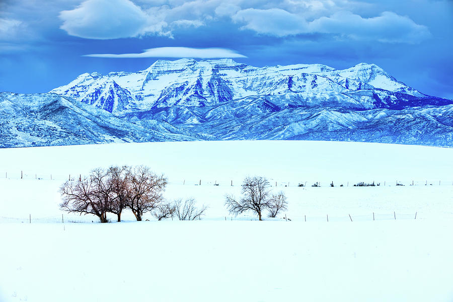 Blue Timp from Heber Valley. by Johnny Adolphson