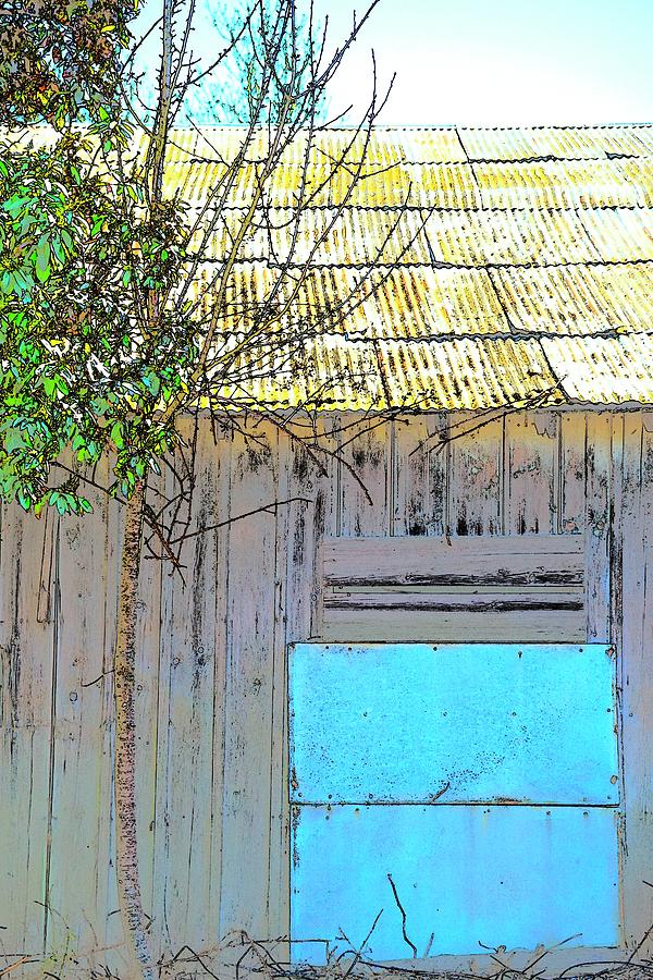 Blue Tin Tree Metal Roof Photograph