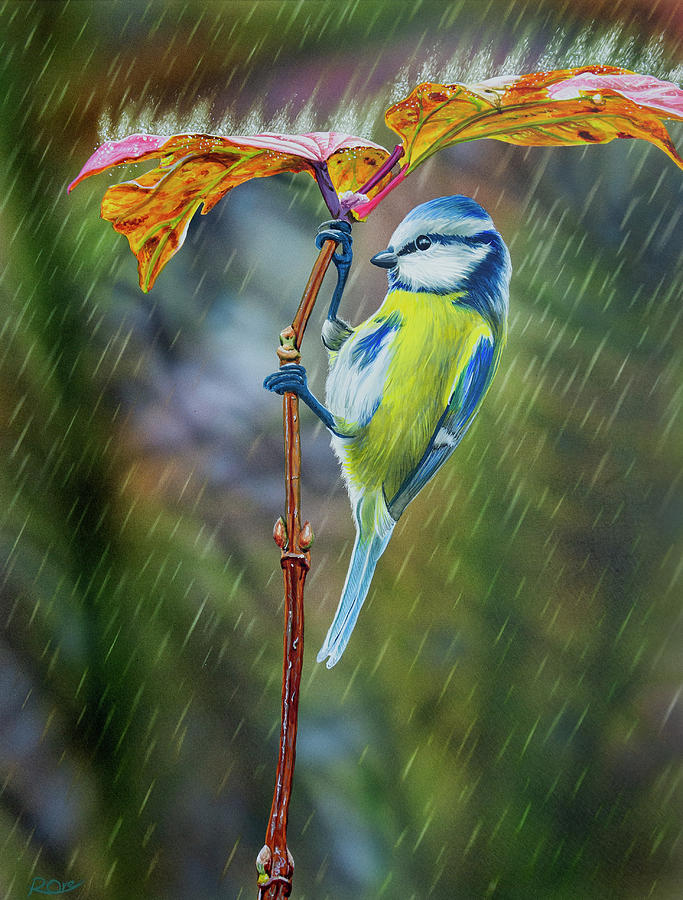 Blue Tit Painting - Blue tit in the rain by Raymond Ore