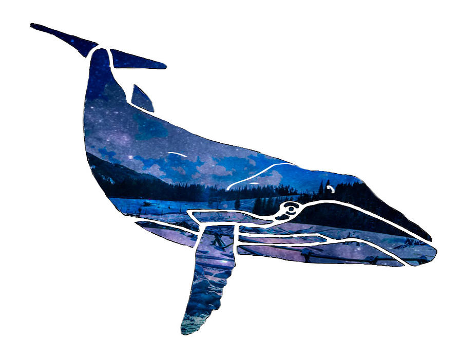 Blue Whale Silhouette1 Mixed Media