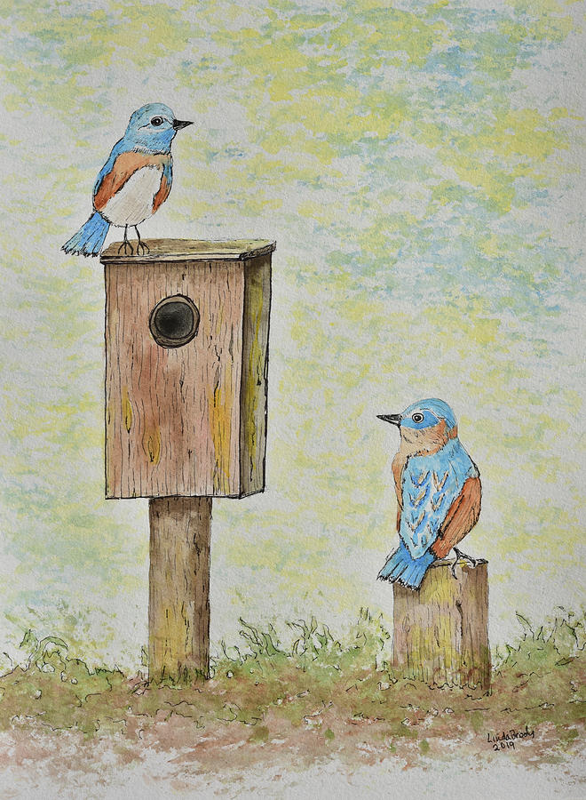 Bluebirds at Home by Linda Brody