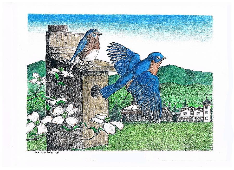 Bluebirds Drawing by Lee Pantas