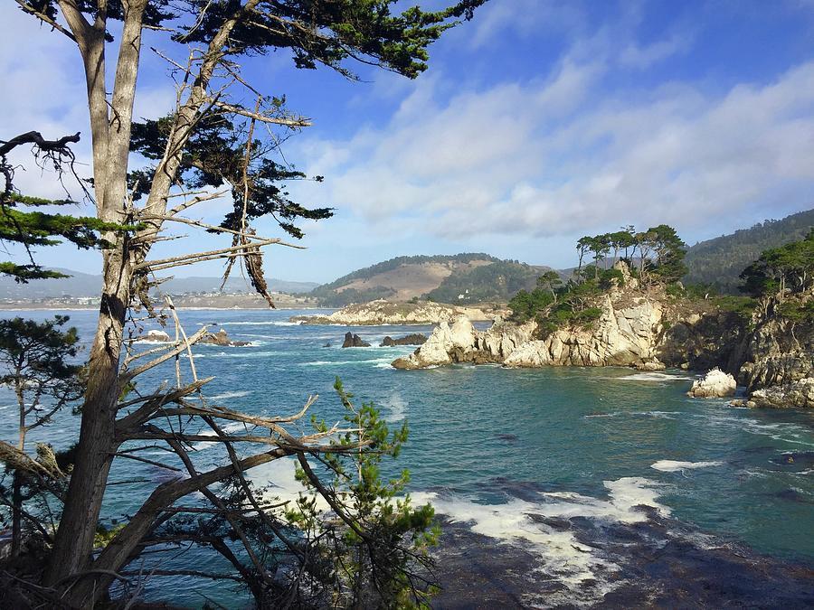 Bluefish Cove Point Lobos Photograph