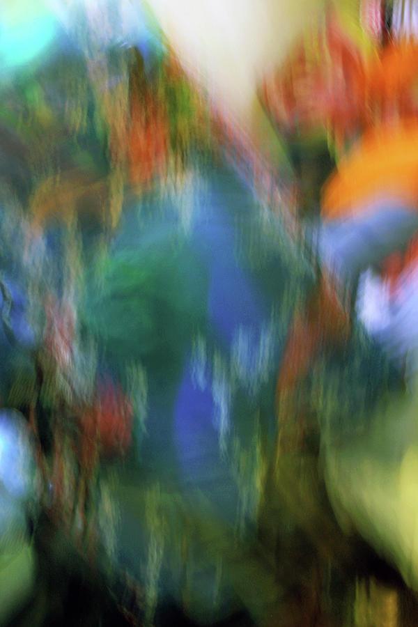 Blur Abstract 022021a Photograph