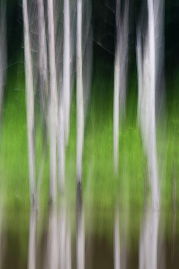 Jordan Lake Photograph - Blurred Reflection by Melissa Southern