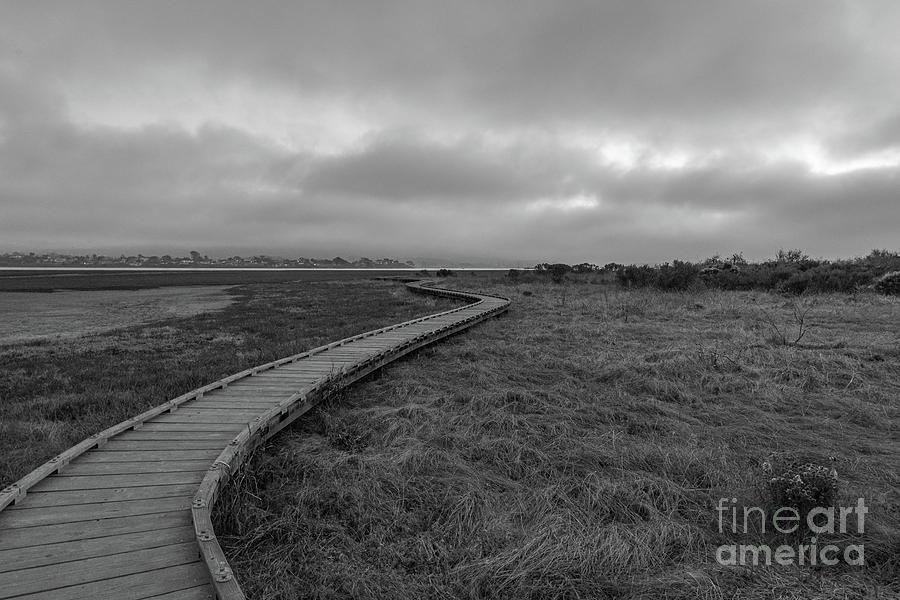 Boardwalk Photograph - Boardwalk Estuary  by Jeff Hubbard