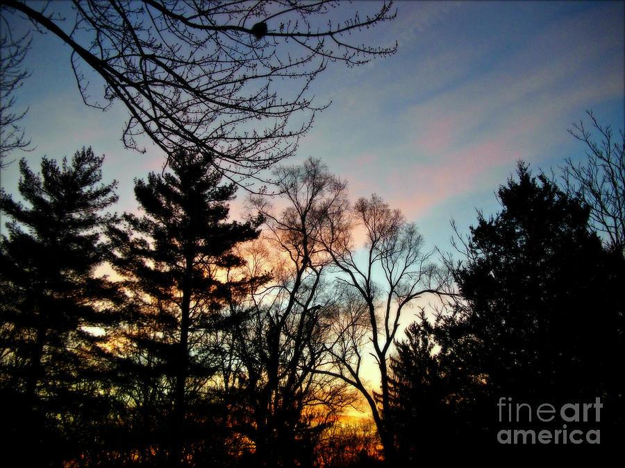 Bold Sunrise Pastel Sky Photograph