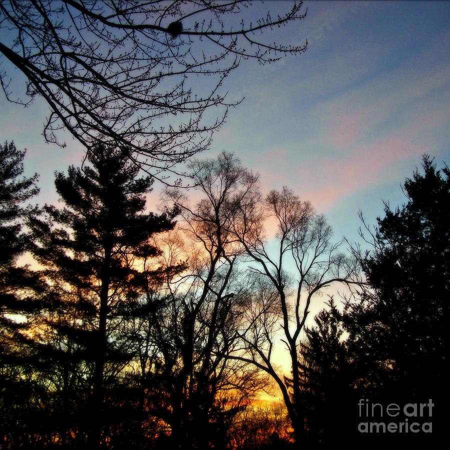 Bold Sunrise Pastel Sky -  Square by Frank J Casella