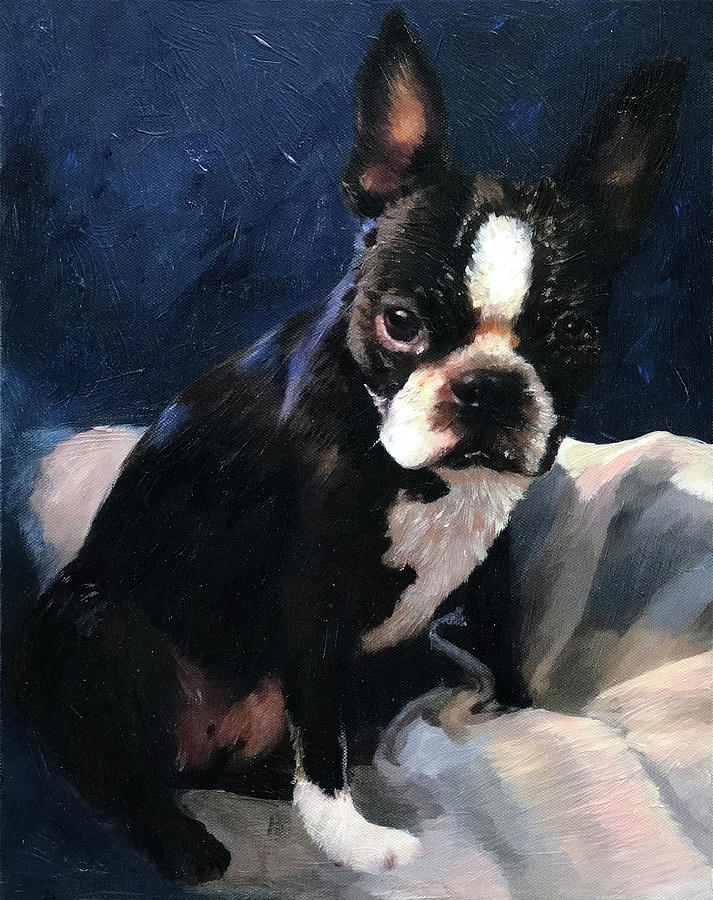 Boston Terrier Painting by Portraits By NC