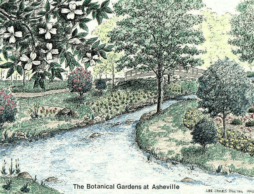 Asheville Mixed Media - Botanical Gardens at UNCA in Asheville NC by Lee Pantas