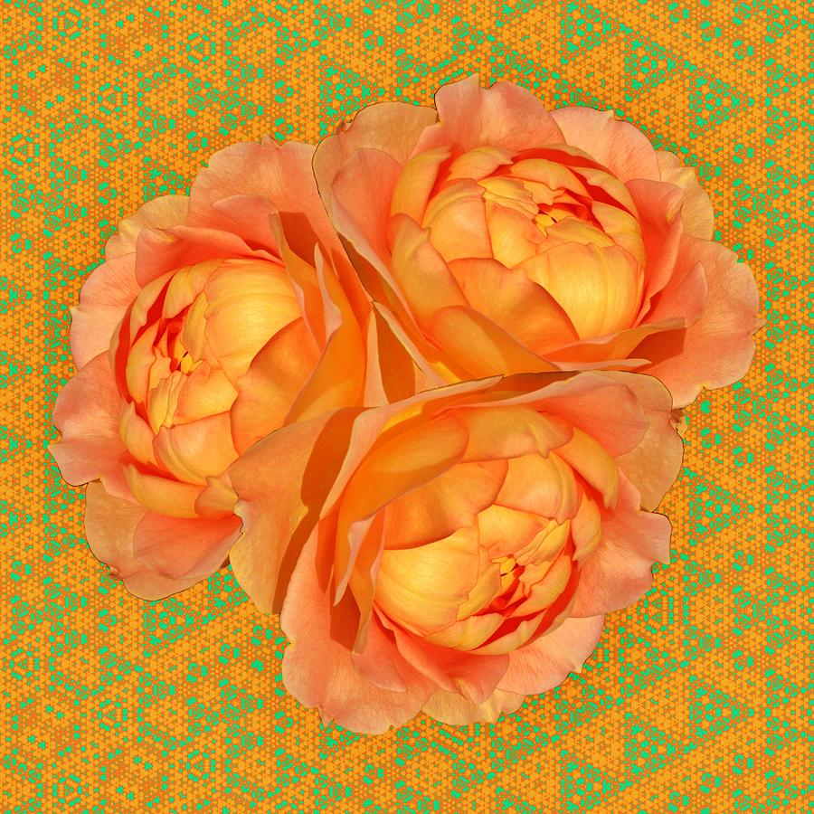 Bouquet of Orange Roses by Wilma Barnwell